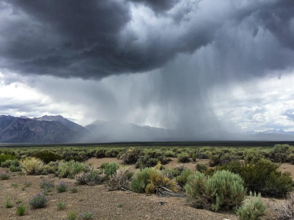 Heavy rain in a desert thunderstorm over sage covered desert